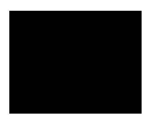 Pietro e Ombretta Acconciature logo