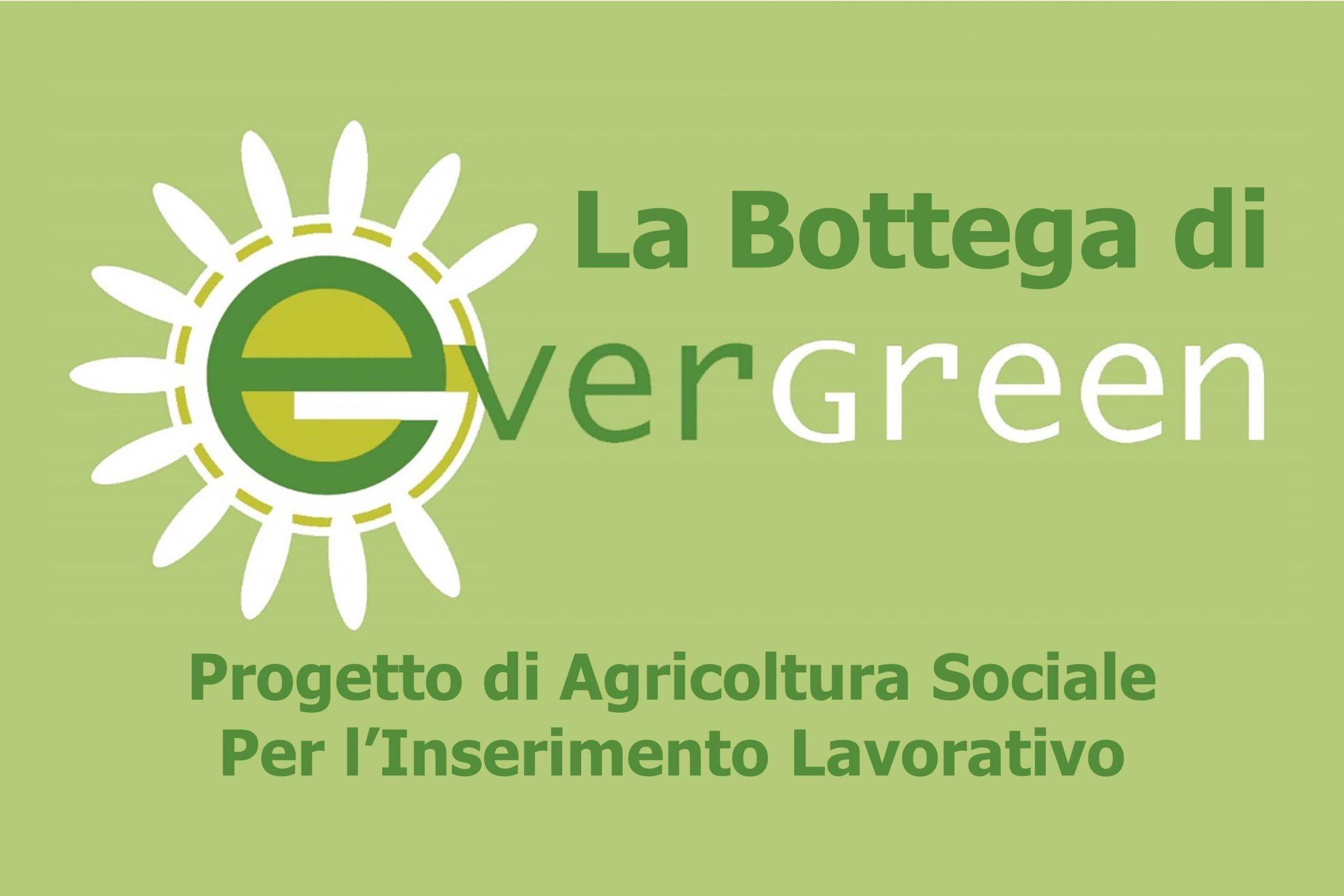 La Bottega di Evergreen logo